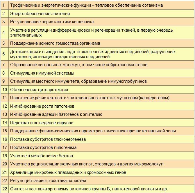 Локальные и системные функции бифидумбактерий и лактобактерий в организме человека
